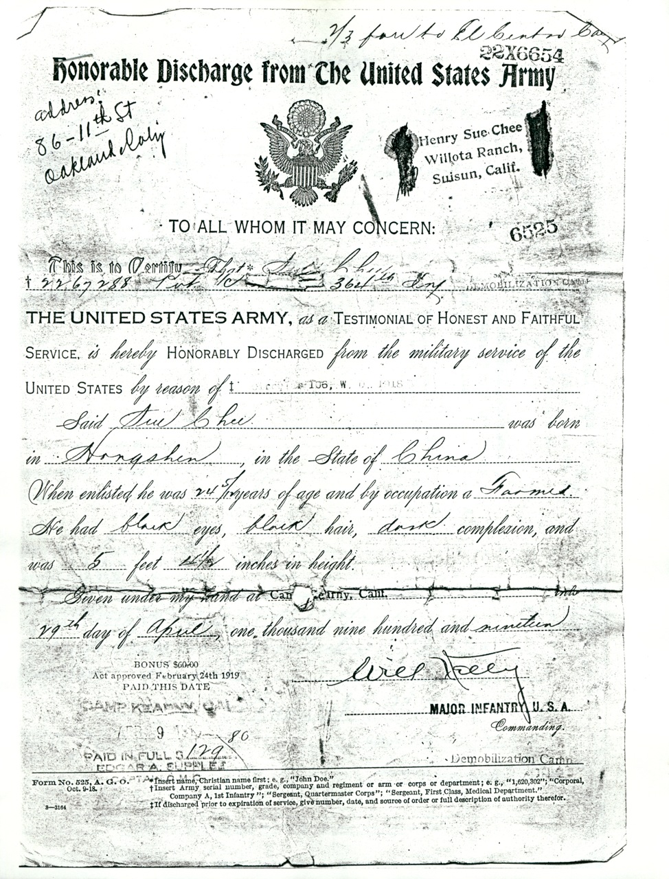 The Henry Alice Sue Story Nicey Ricey Honorable Discharge